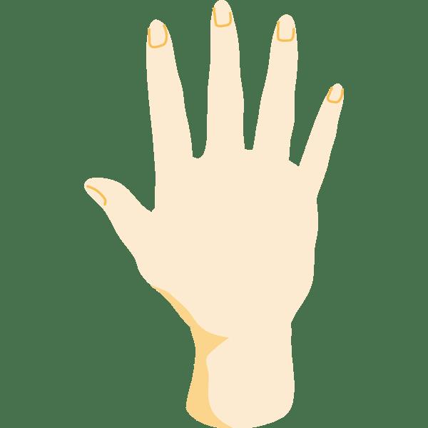 th_hand_paa3