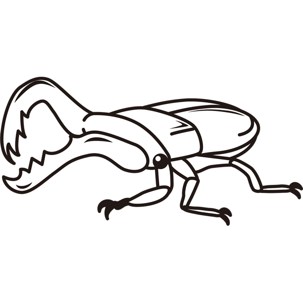 insect_22