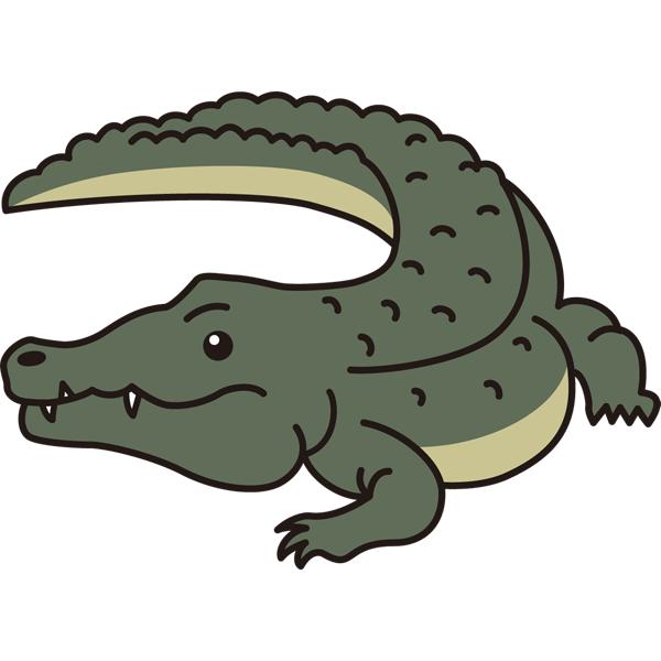 reptiles_05