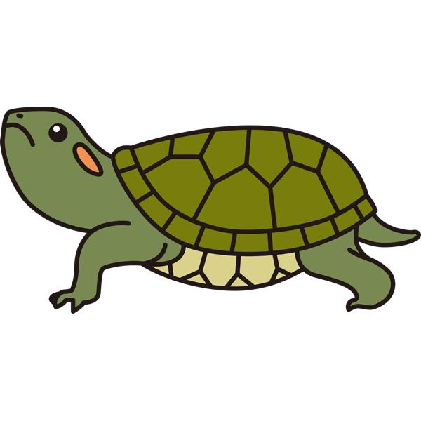 reptiles_13