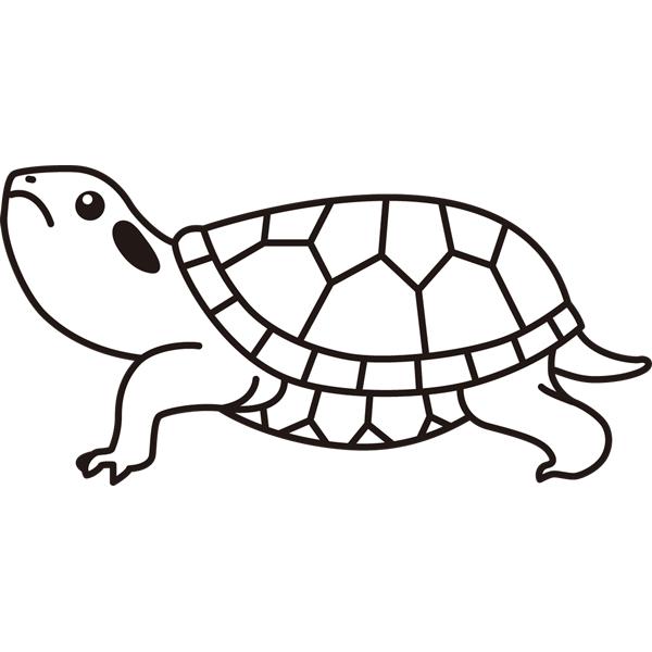 reptiles_14