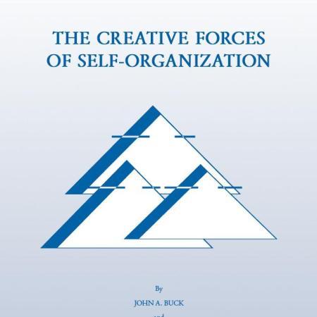 CreativeForces 1 - Die kreativen Kräfte der Selbstorganisation