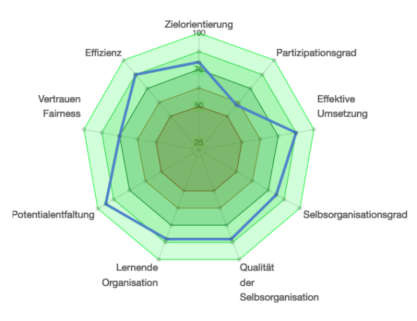 messinstrument_spinnendiagramm