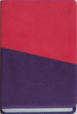 kids-kjv-study-bible-violet-9781598563535