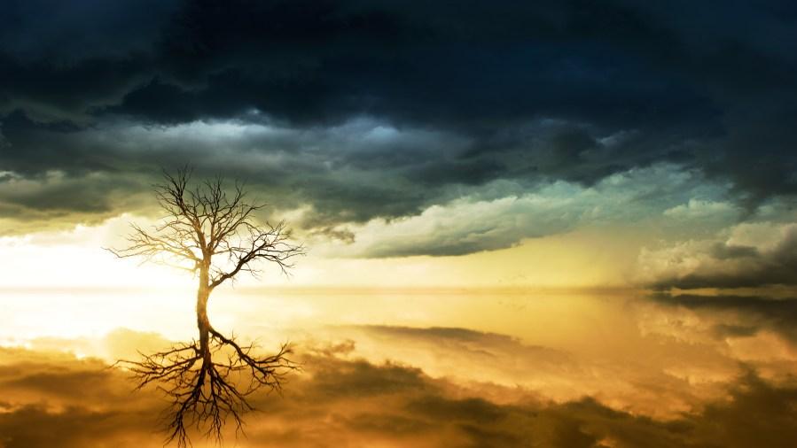 Jesus - The Tree of Life
