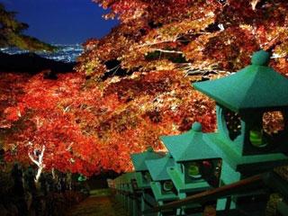 大山寺の写真3