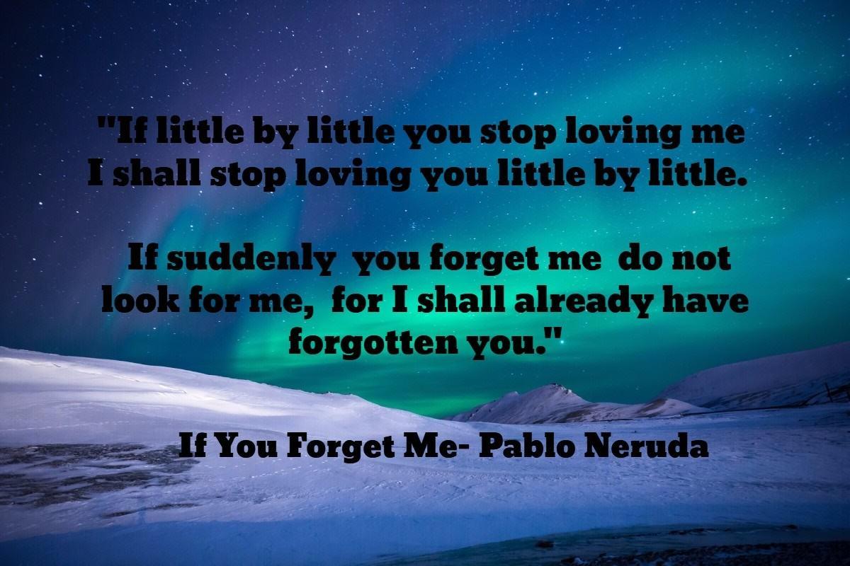 Forgetme Neruda1