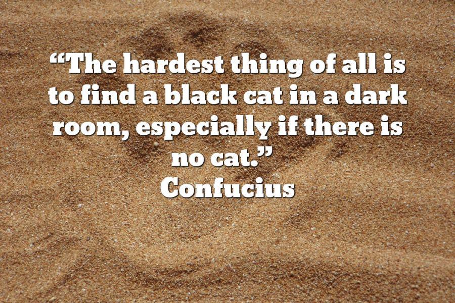 catconfucious