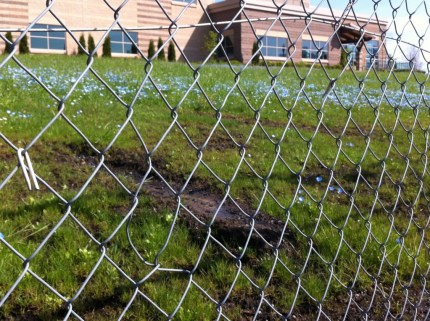 Bare spots created by pour drainage on the Y's saturated hillside, soon to be fixed with drainage pipes along Ridge ST