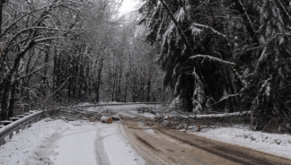Trees down on SR 900,May Valley Rd near Issaquah, 1/19/2012 Photo: WSDOT