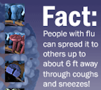 flu2013