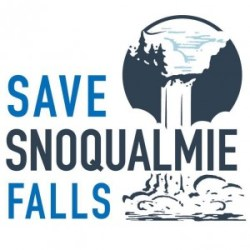 save falls