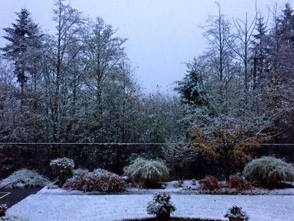 Snoqualmie Ridge - 11/15/15.
