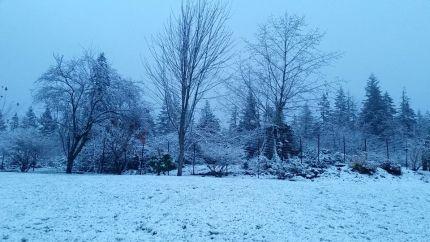 Snow in Wilderness Rim, 12/4/16. Photo by Kathy Hyland