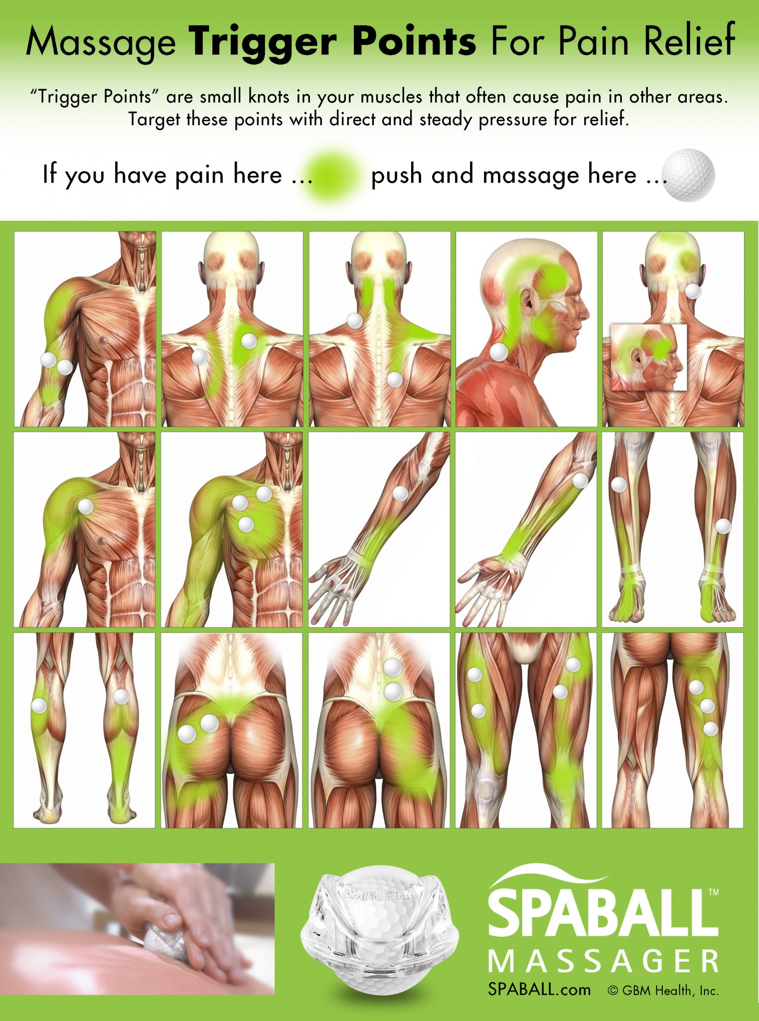 Massage Trigger Points For Pain Relief  Spaball Massager