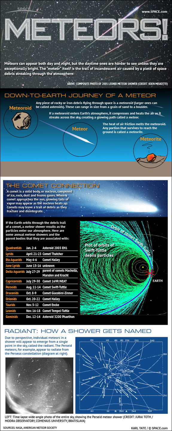 Learn why famous meteor showers like the Perseids and Leonids occur every year, in this SPACE.com infographic.
