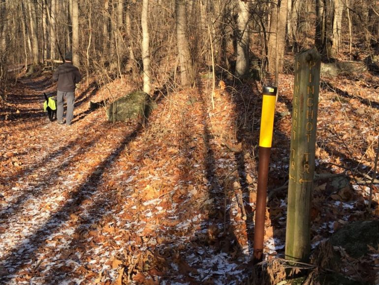 Leaf and ice strewn trail and a marker showing right and straight as the same name, Pinchot