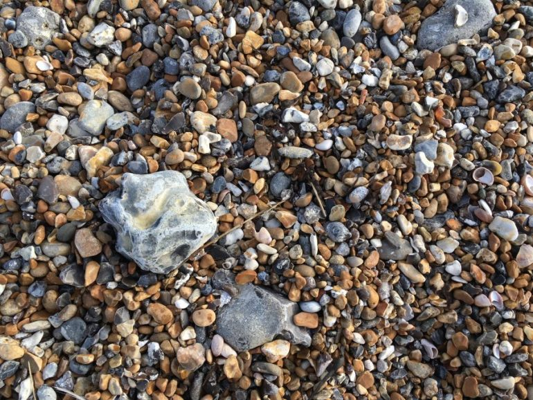 A close up view of multi-colored pebbles, rocks and mussel shells.