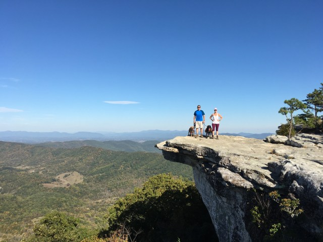Two adults and two labradors pose on the McAfee rock outcrop, overlooking the expansive valley.