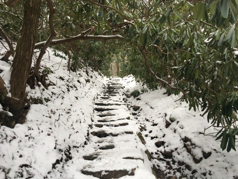 Rhondodendrons stretch across a snow covered trail of stone steps