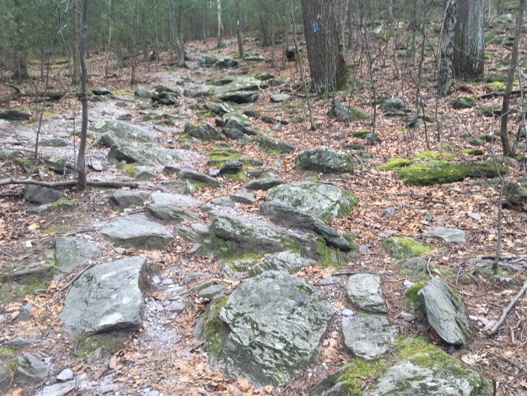 A blue blaze marked trail covered in rocks that resemble stepping stones