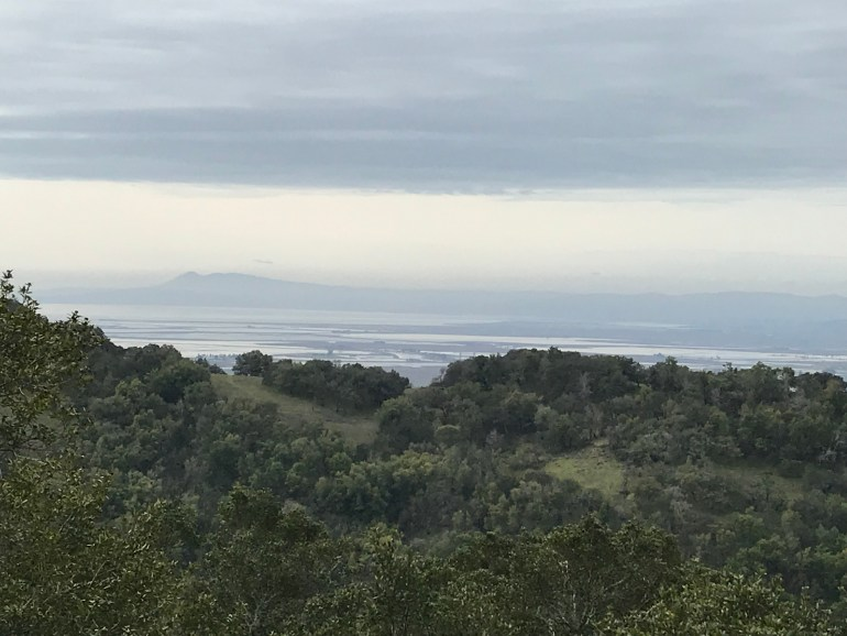 A view from above shows trees below  and a hazy body of water in the distance