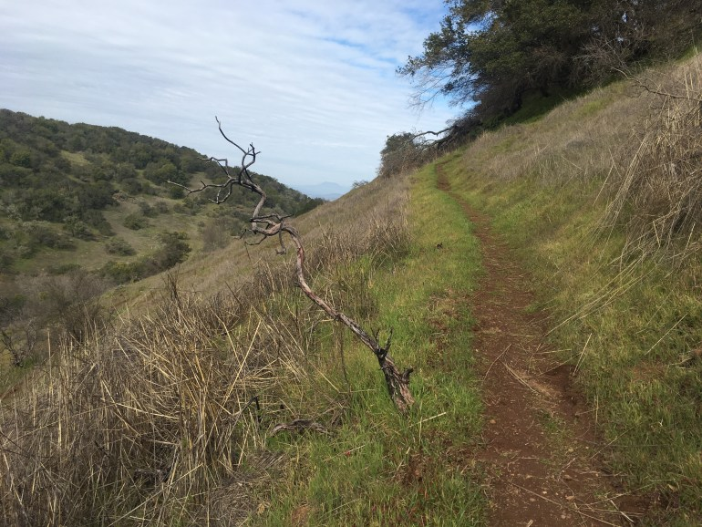 A narrow dirt trail  travels upward and connects with the blue sky