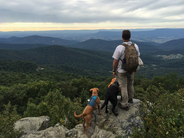 A man and 2 dogs look at distant mountains while standing on the edge of a rock.