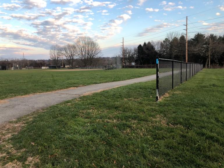 asphalt walkway in a green park