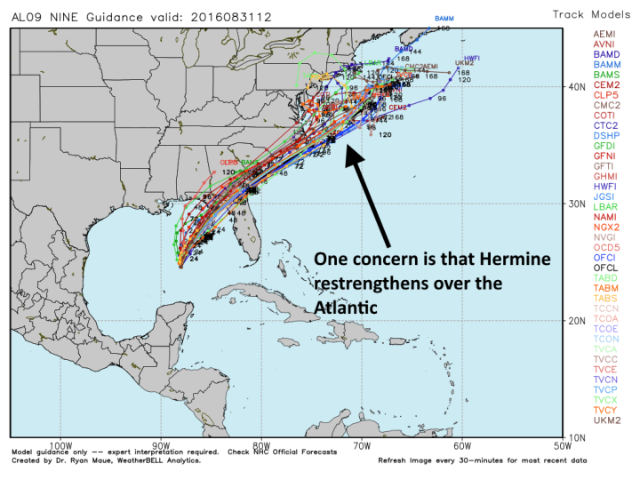 Track models for Tropical Storm Hermine. (Weather Bell)