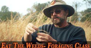 Eat The Weeds- Foraging Class