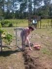 pulling poles