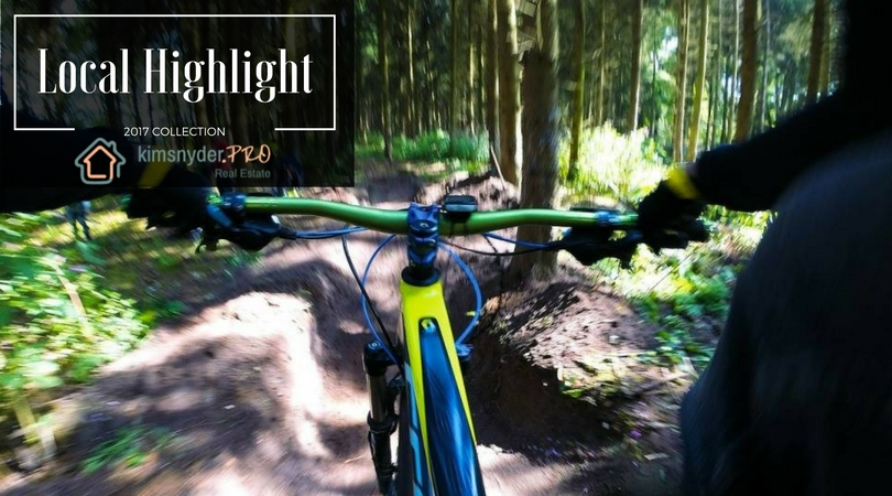 Local Highlight: Mountain Bike Trails in Lake Norman & Charlotte