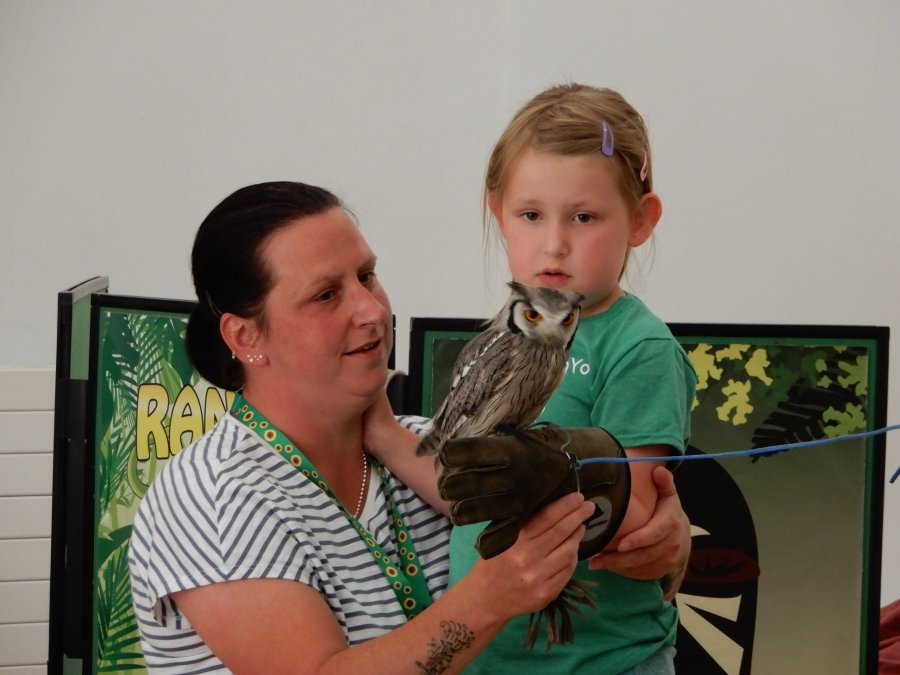 Girl and grown up holding an owl together at SPACE's Ranger Stu event
