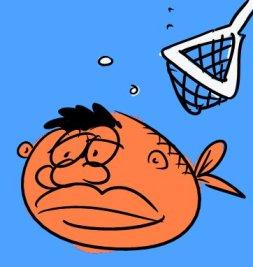 Cowenfish