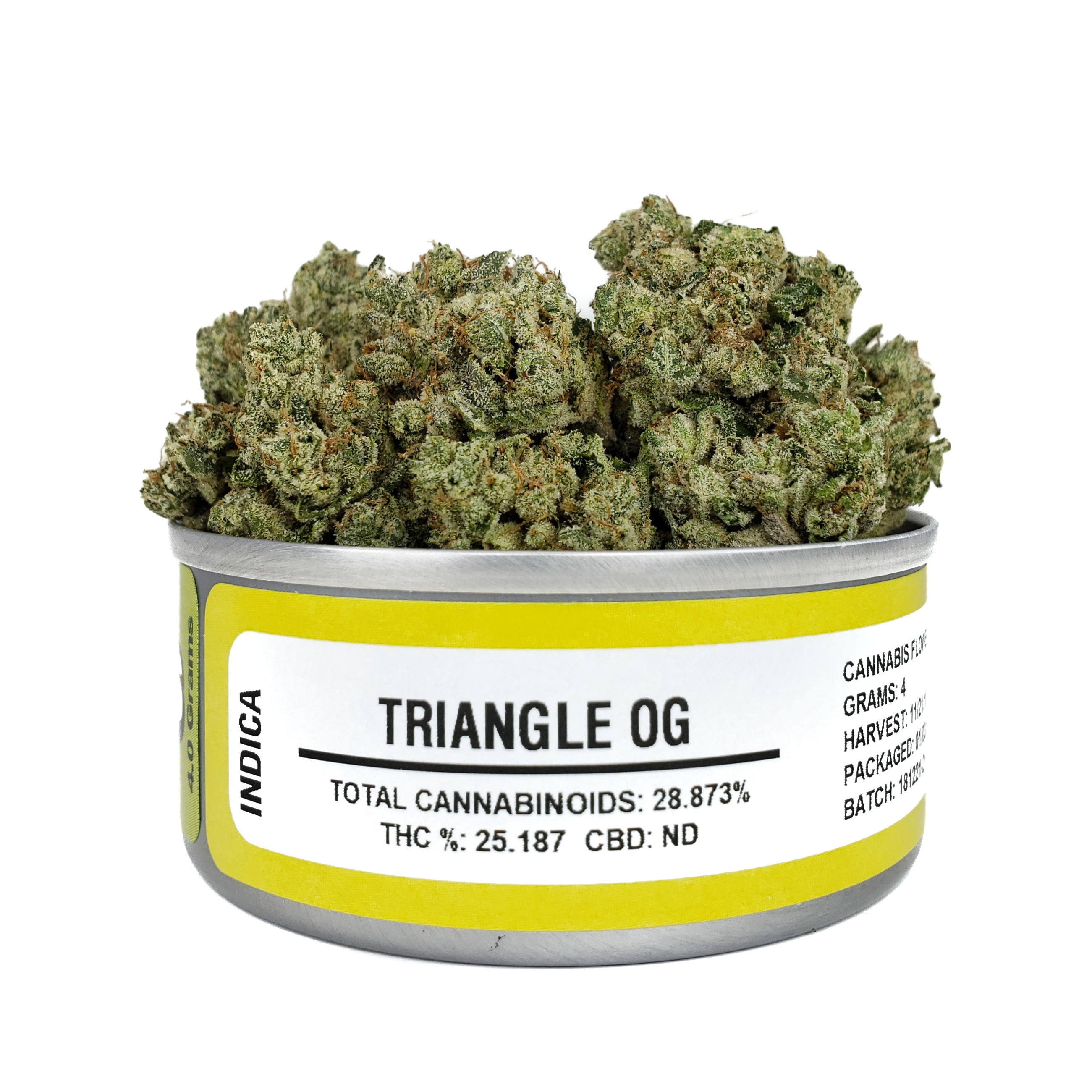triangleogCan