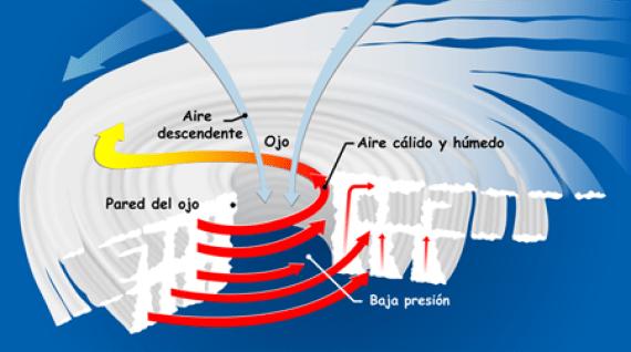 Sección transversal de un ciclón tropical