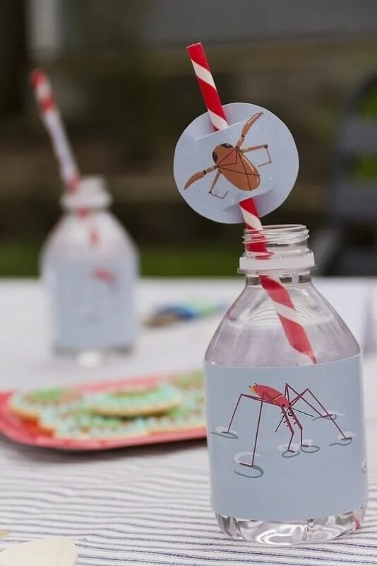 20 Bug Themed Birthday Party Ideas Spaceships And Laser