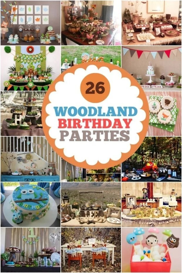 26 Woodland Themed Boy Party Ideas  Spaceships and Laser