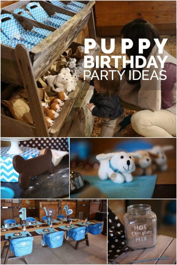 A DogGone Cute Boys Puppy First Birthday Party