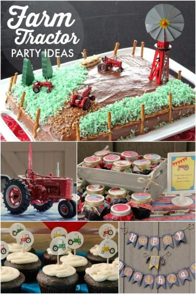 Strange 41 Farm Themed Birthday Party Ideas Carousel Kids Party Services Funny Birthday Cards Online Sheoxdamsfinfo