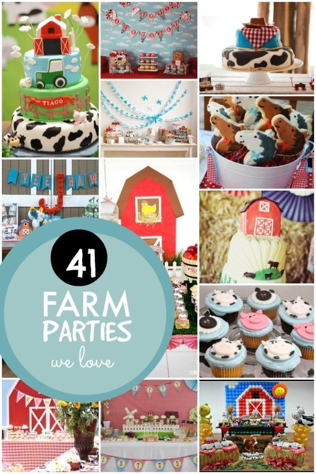 Farm Themed Birthday Party Ideas Boysjpg