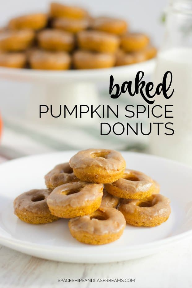 Mini Baked Pumpkin Spice Donuts Recipe