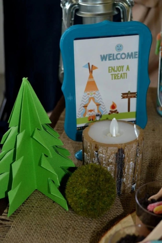 Boys woodland Themed Party decorations