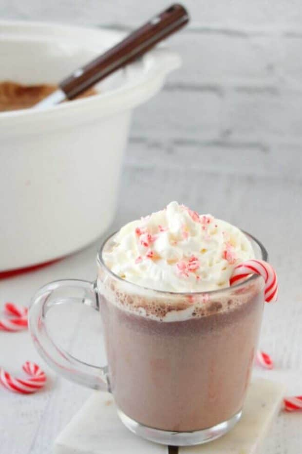 Slow Cooker Candy Cane Hot Chocolate Recipe