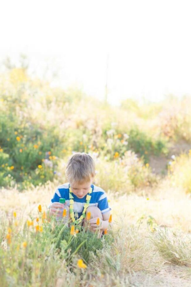 Hiking with Kids Ideas