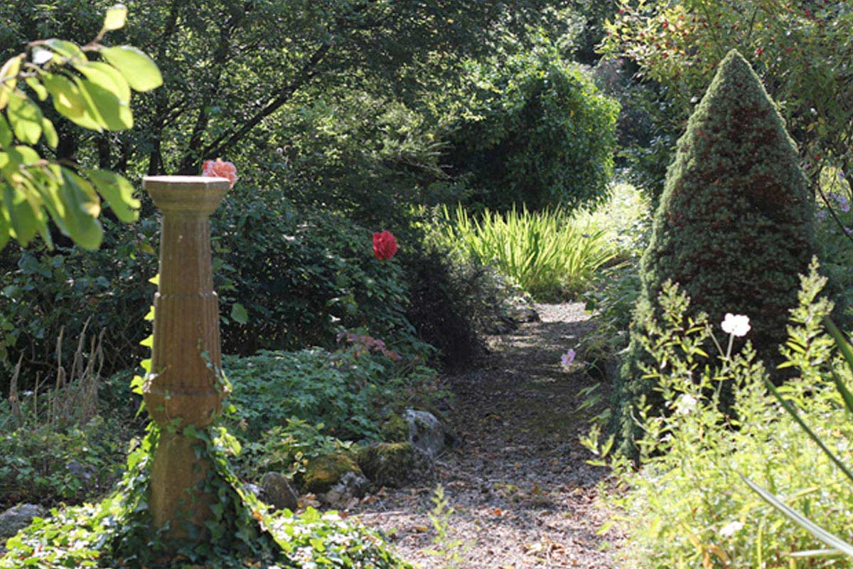 Space to Grow Consultancy | Creating usable growing spaces & gardens