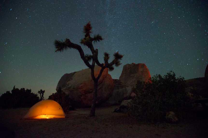 Camping in Joshua Tree National Park - NPS/Hannah Schwalbe