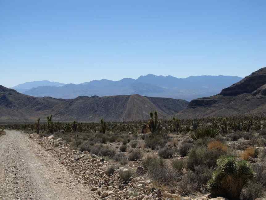 Stargazing near Las Vegas - Desert National Wildlife Refuge - Ken Lund via Flickr