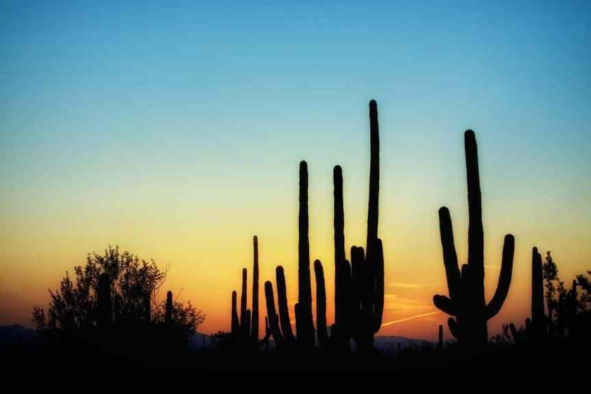 Stargazing in Tucson Featured - Pixabay